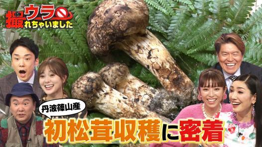 """TV初公開!""""初松茸""""収穫のウラ側&""""秘境駅""""を調査!"""
